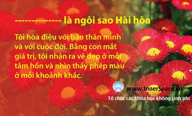 TOI-LA-NGOI-SAO-BINH-YEN-HAI-HOA