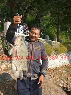 Master Essen Ikan Nila