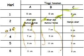 Sains Blog Contoh Kasus Metode Ilmiah Biologi