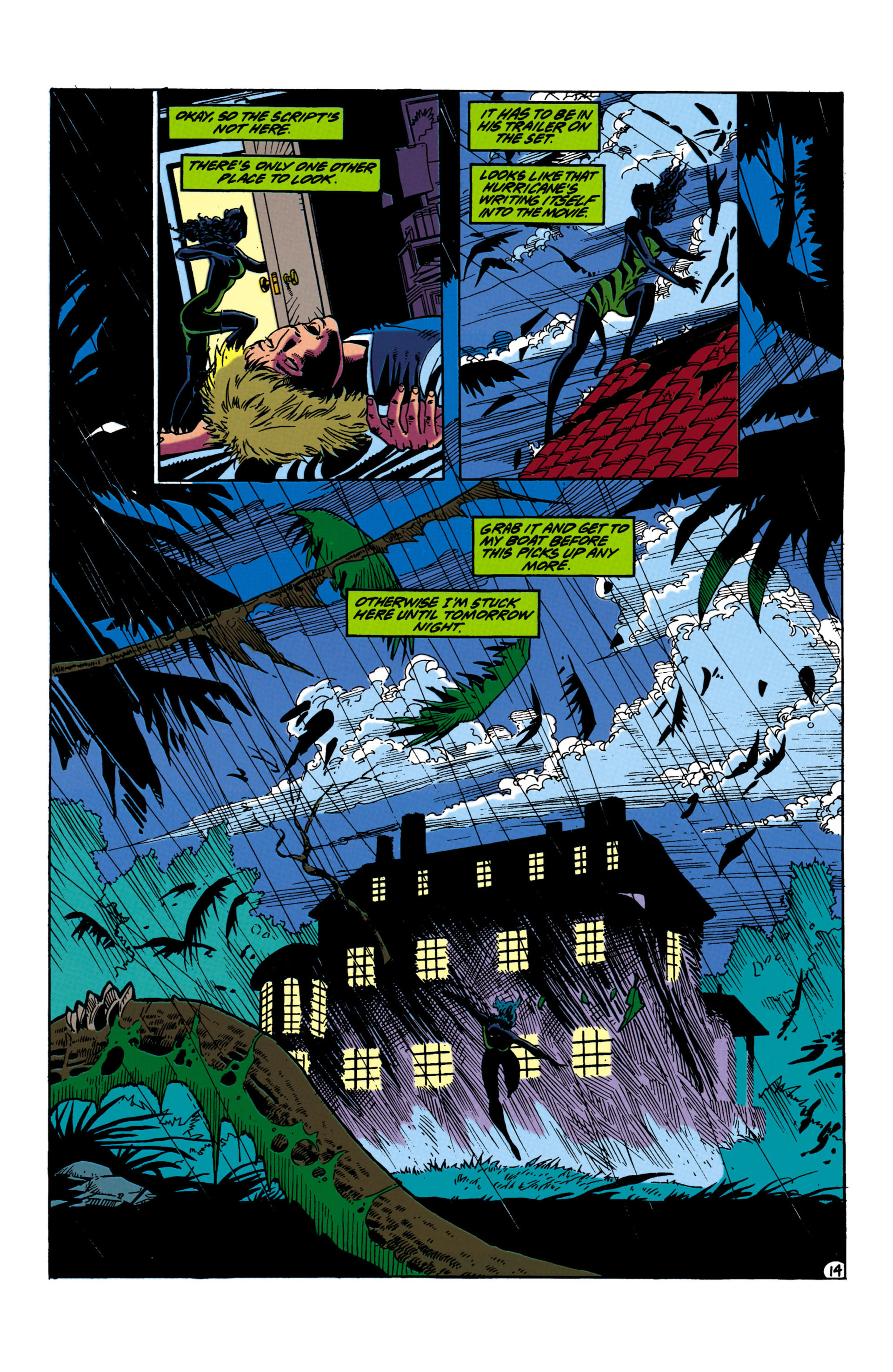Catwoman (1993) Issue #20 #25 - English 14