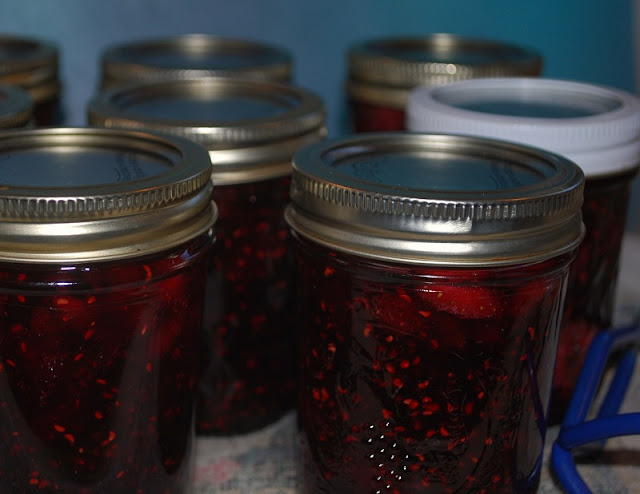 Jars of strawberry, raspberry, blackberry jam.