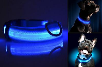 collares para perros LED