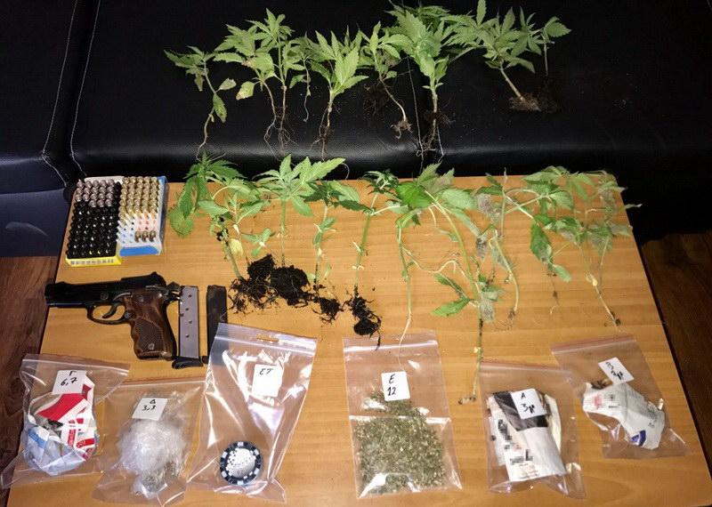 Συλλήψεις στον Έβρο για καλλιέργεια και κατοχή ναρκωτικών