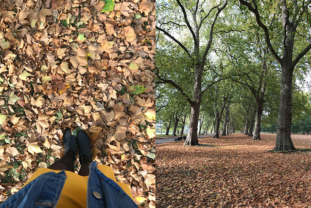 12 Reasons Why I Love The Autumnal Season || Guest Post