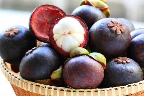 Khasiat Kulit Manggis Di Dalam Berry Jus