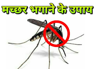 मच्छरों को रोकने के उपाय Measures to stop mosquitoes