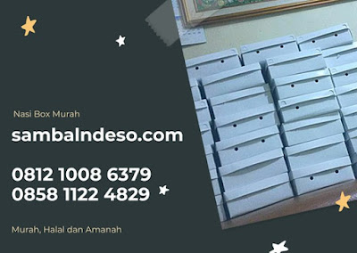 paket nasi kotak Ciputat kota Tangerang Selatan