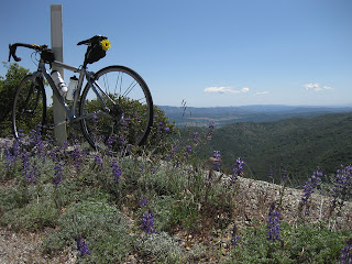 Bicycle with purple lupine overlooking the valley from the back of Mt. Hamilton