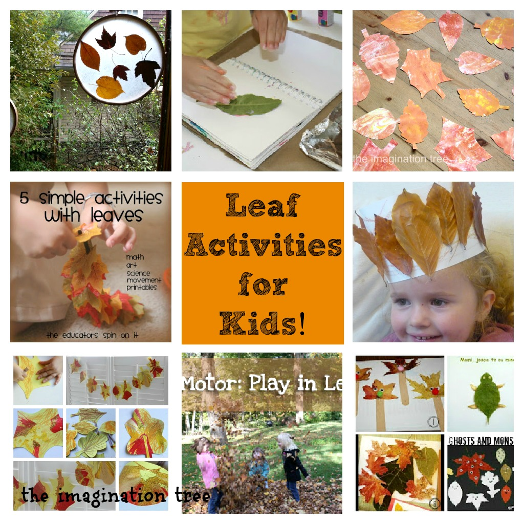 Leaf Activities For Kids From It S Playtime