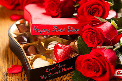 Rose-Day-images-for-2017