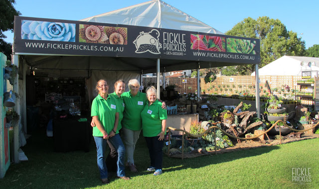 Fickle Prickles at the Perth Garden Festival 2017