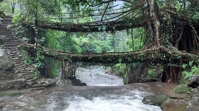 double decker root bridge nongriat meghalaya