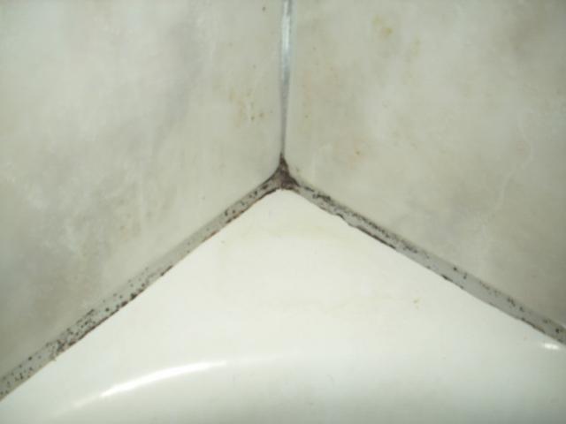 Haushalt und mehr: Fugen im Badezimmer reinigen