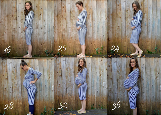 Belly Shots, Belly Pregnancy Progression