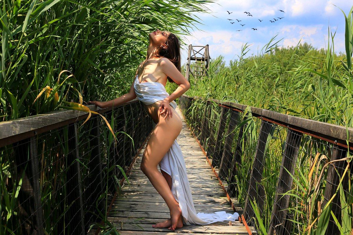 KirstieVegas Stripchat-Models-Webcams-sensual