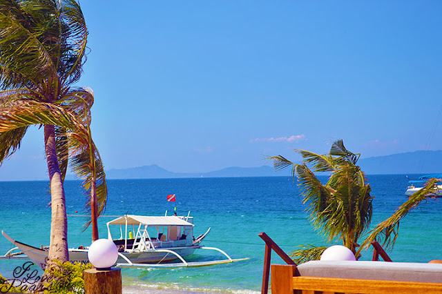 beach front of Sunny Hotel/Puerto Galera Beach Resort