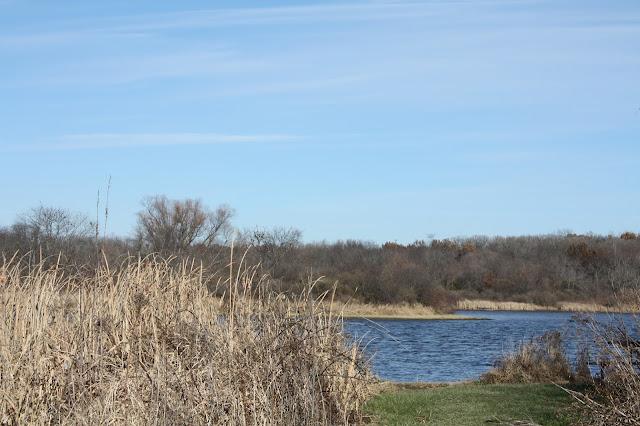 Lake view at Rock Cut State Park