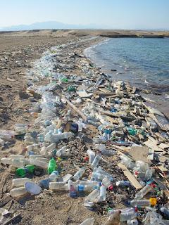 بحوث مختصر حول التلوث بالفرنسية  La pollution