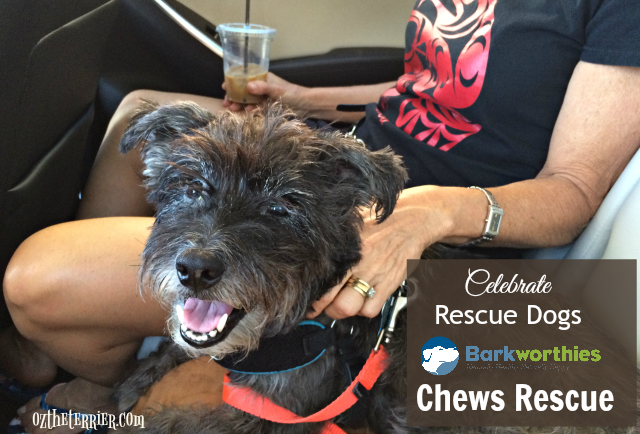 oz supports barkworthies chews rescue shelter program