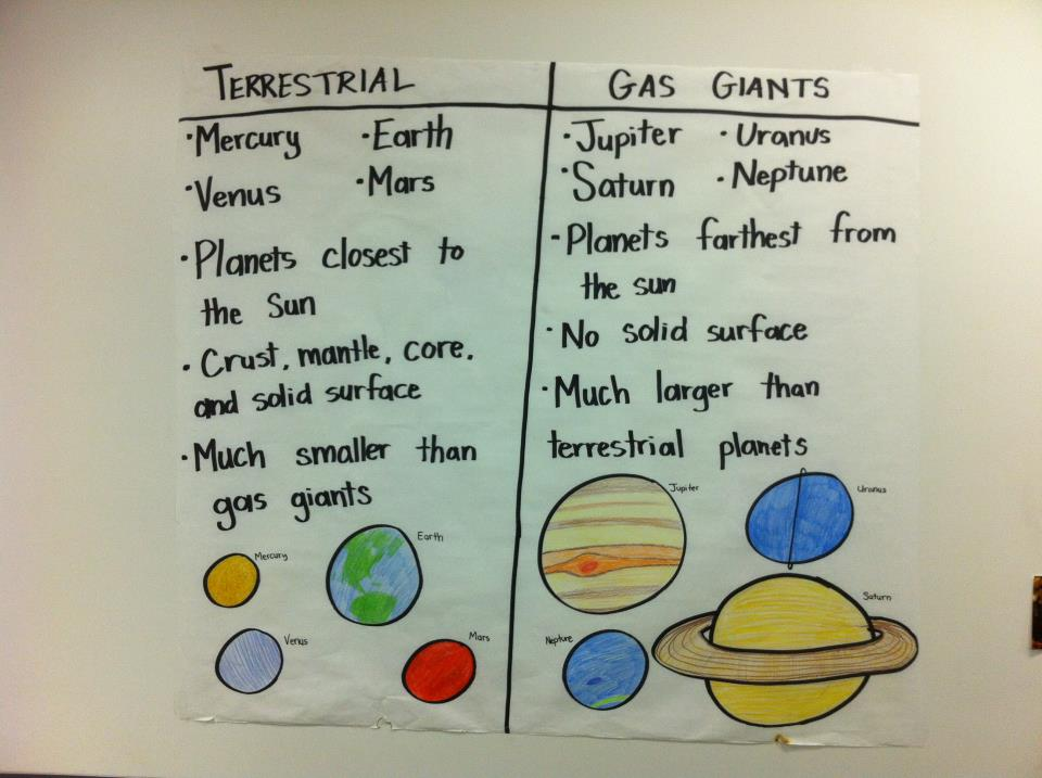 Ms Parker S Science Class Anchor Charts