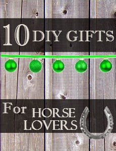 gifts for horse lovers ideas