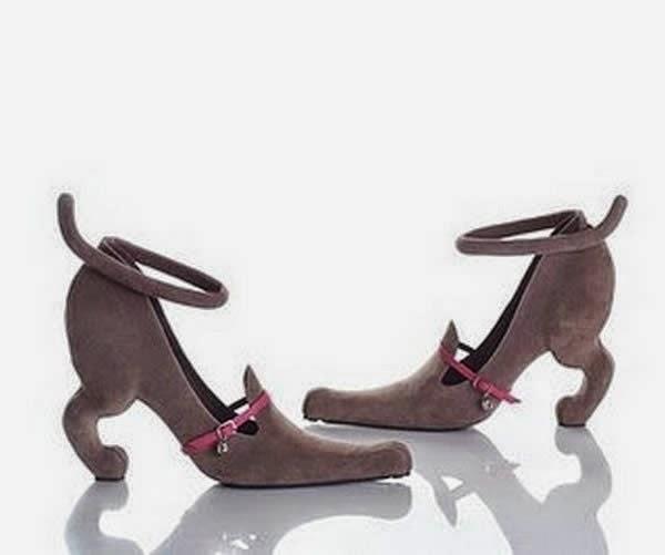 zapato curioso 4