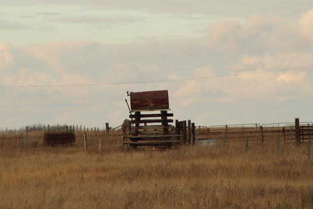 Old rusty fuel tank in grassy field