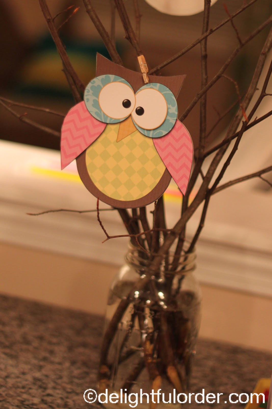 Delightful Order Owl Birthday Party Ideas