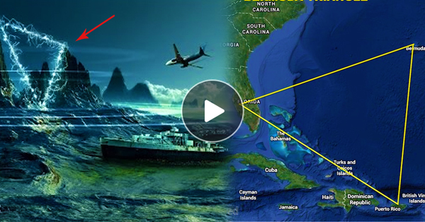 bermuda triangle plane mystery solve But australian scientist dr karl kruszelnicki told newscomau there is no mystery to solve plane in the bermuda triangle mystery of the bermuda triangle.
