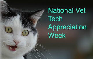 "Black and white cat with its mouth open. The image says, ""National Vet Tech Appreciation Week."""