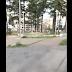 Live YouTube - Un Pomeriggio Al Parco Di Avellino