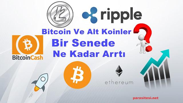 bitcoin ve alt koinlerin bir senelik artışları