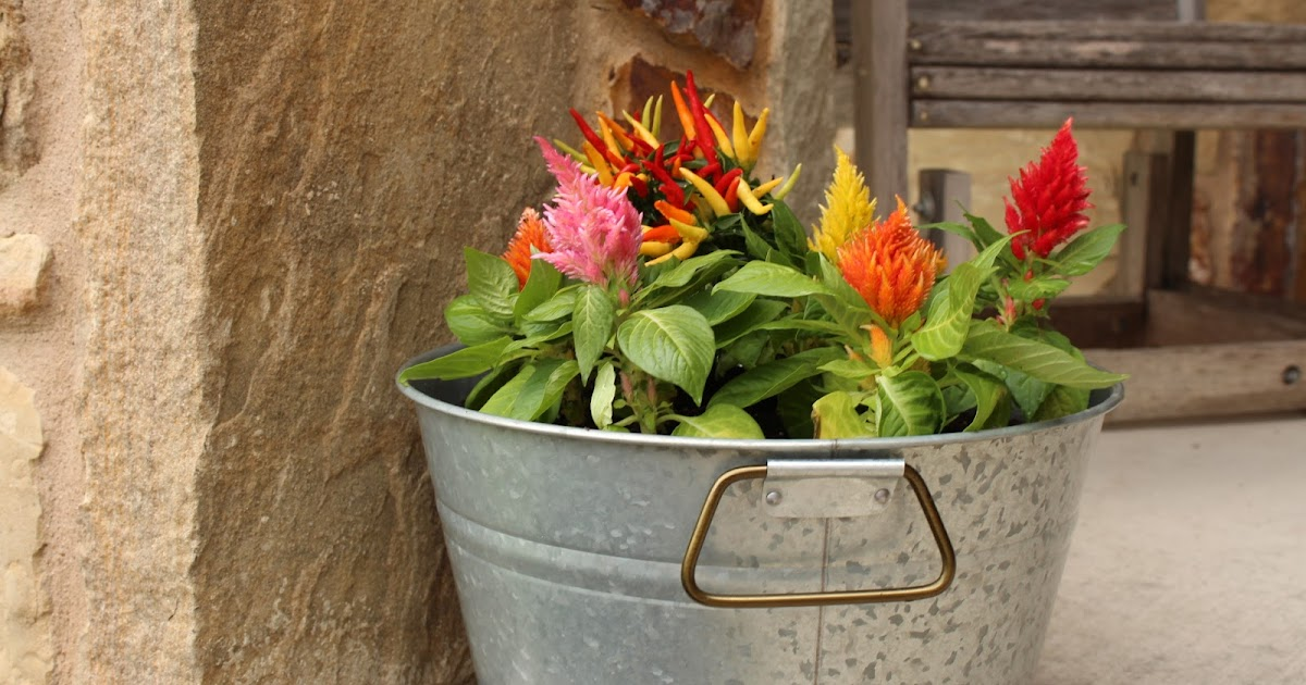 @mhsellers's cover photo for 'Better Homes & Gardens® DIY Farmhouse Planter'
