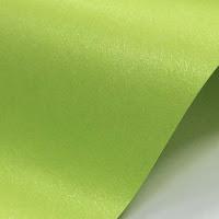 BIT NOVITA' 2013 - Partecipazioni Pocket colorate perlescentiAvvisi - Novità