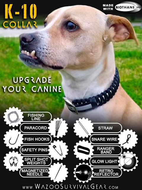 K10 Survival Dog Collar