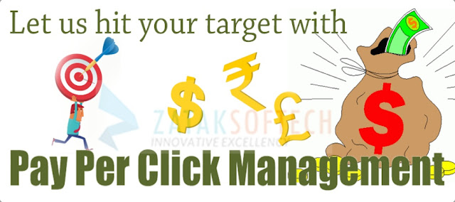 PPC Management Company in  India