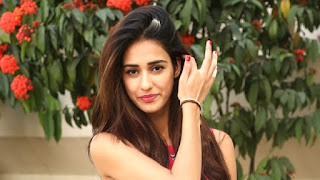 Baaghi 2 Movie 2018 Story Line, Star Cast and Release Date