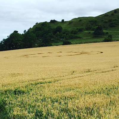 Crop Circle at Cley Hill, Wiltshire