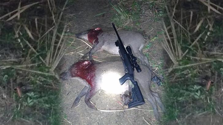 Letkol Wahyo Yuniartoto ; Babi hutan itu musuh bagi petani
