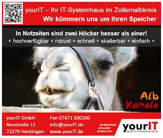 Anzeige des IT-Systemhauses yourIT zum Thema Speicher und Kamelhöcker