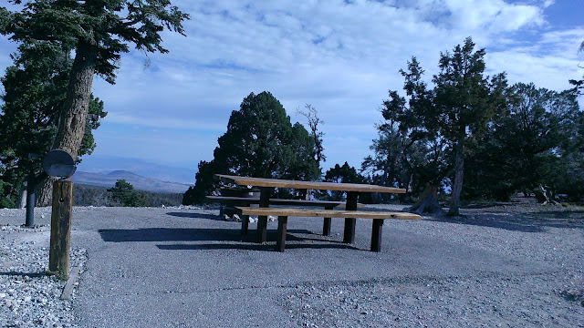 Picnic table and view - Hilltop Campground, Toiyabe National Forest, Kyle Canyon, Nevada Image: M Burgess