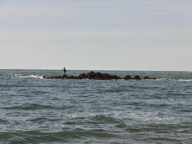 Sancti Petri pescador en islote