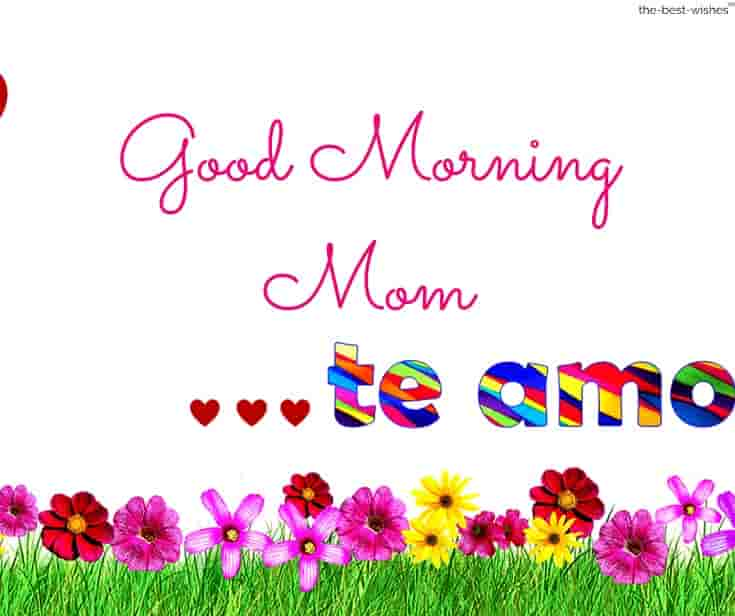 good morning mom te amo