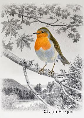 Bilde av digigrafiet 'Rødstrupe'. Digitalt trykk laget på bakgrunn av et maleri av en fugl i sommerlandskap. En illustrasjon av rødstrupe, Erithacus rubecula. Fuglen sitter på en kvist i en lønn. Stilen kan beskrives som figurativ og realistisk. Bildet er i høydeformat.