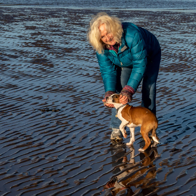 Photo of me giving Ruby a stroke on the beach