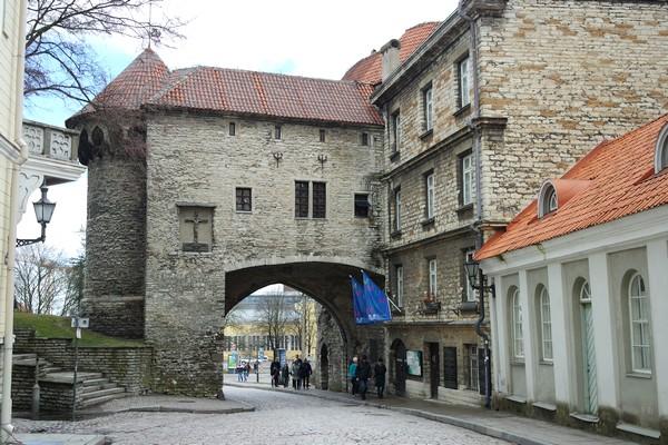 estonie tallinn vieille ville rue pikk tour margaret musée maritime