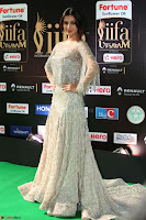 Sonal Chauhan in a stonework Floor Length Silver Designer Gown at IIFA Utsavam Awards March 2017 033.JPG