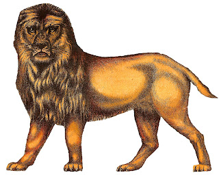 lion animal image antique illustration