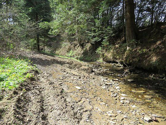 Potok Piwny.