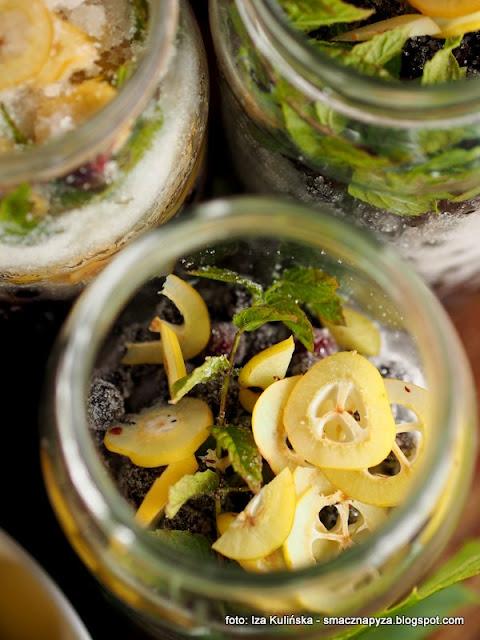 nalewka podlaska, podlasianka, podlasie, owoce, wodka owocowa, czeremcha, pigwowiec, winogrona, spizarnia, nalweki domowe